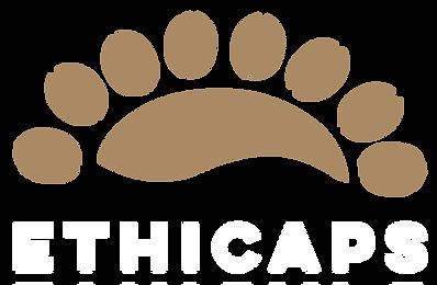 Logo2.2.png