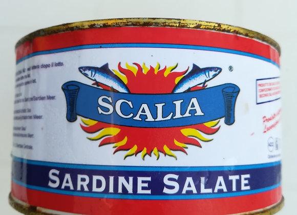 SARDE SALATE 1700-1000PN                  8.80€ a vaso