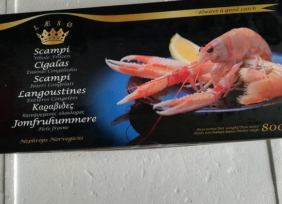 CODE DI SCAMPO 45-60 LAESO 1Kg   €20.00 a scatola