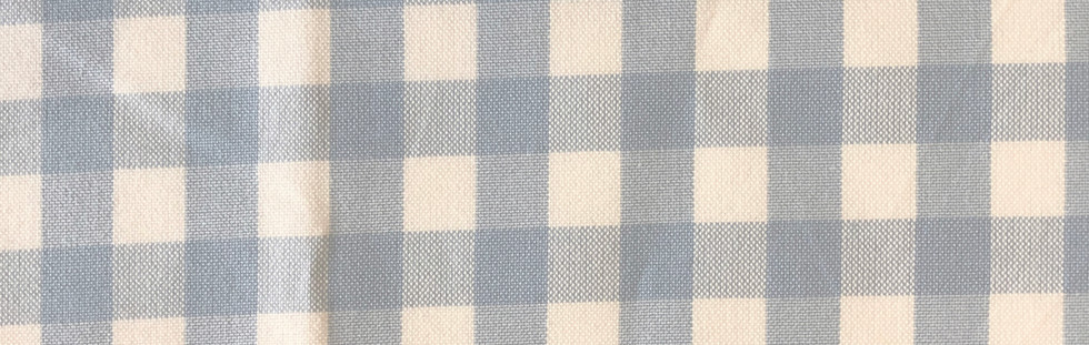 Pale blue check