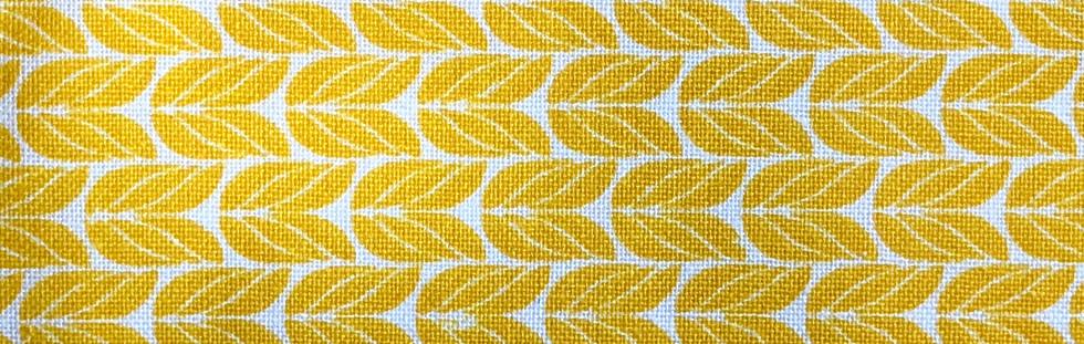 Yellow wheat on white - horizontal