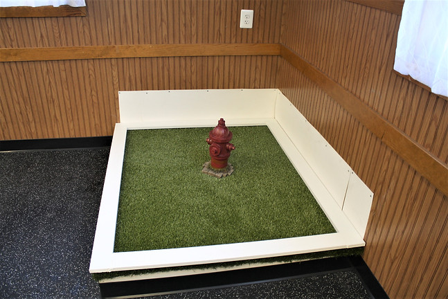small room turf box.JPG