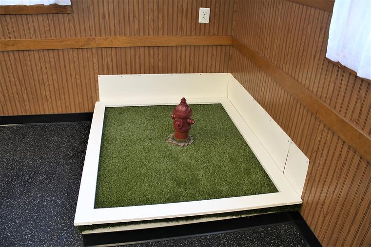 small room turf box.JPG