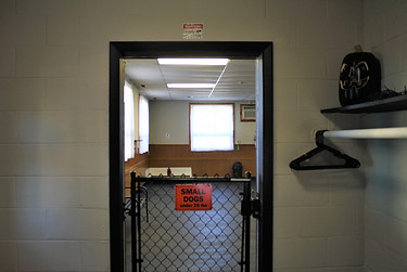 small dog entrance.JPG