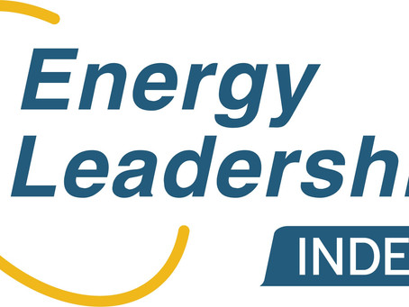 What is The Energy Leadership Assessment
