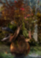 Portrait of an artist as an eco feminist