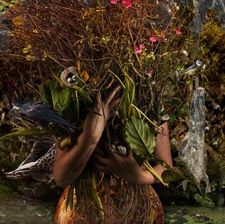Portrait of an artist as an eco feminist