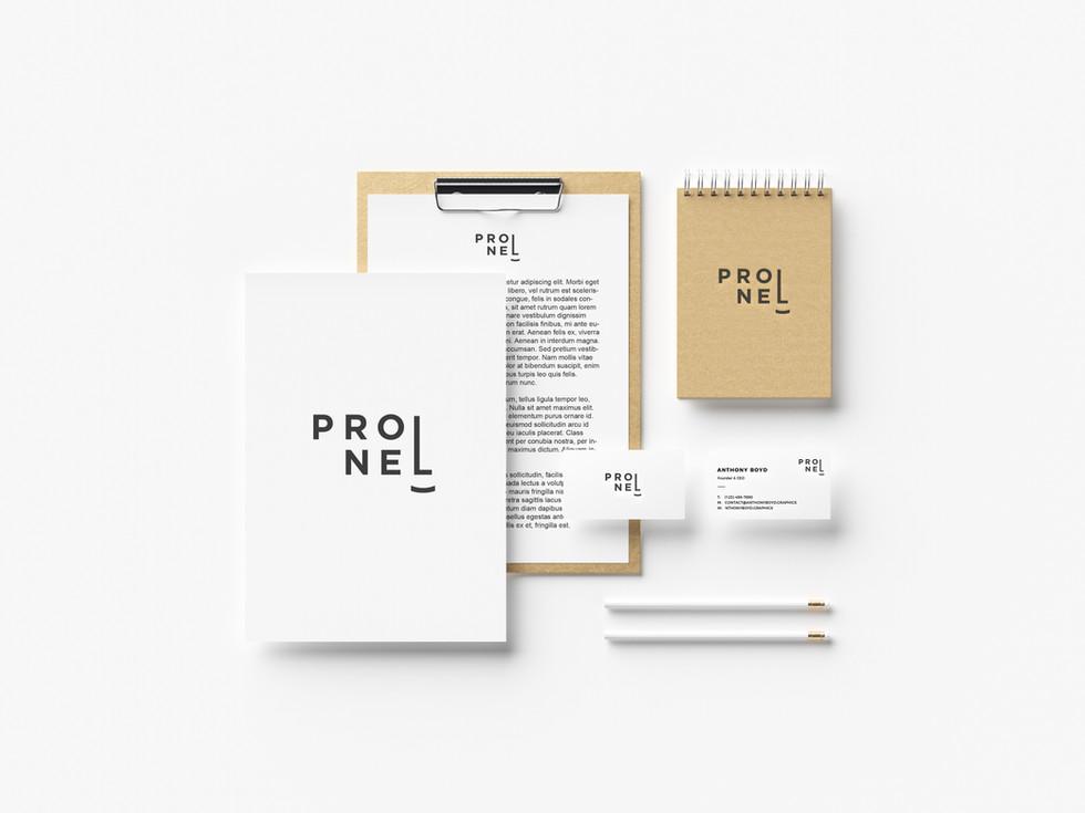 프로넬(4).jpg