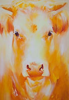 Cowshead