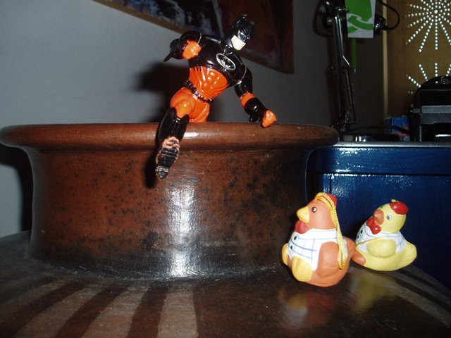 Batman and startled chicks