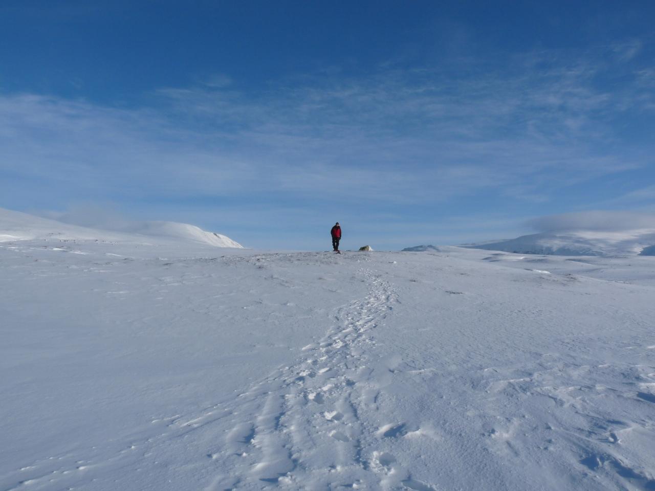 Norway 2010-17