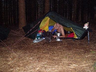 Willem Fox die wakker wordt in het bos