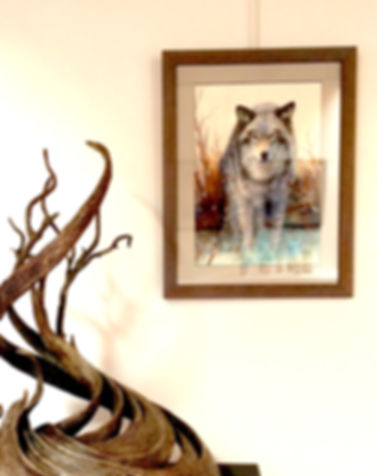 Gray Wolf-SantaFe.2018.JPG