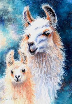 Llama Mama