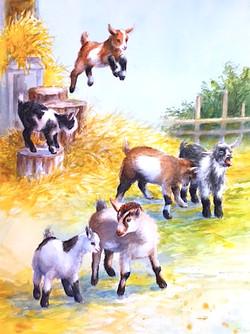 Goatee's Playground