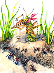 Grasshopper Plays His Fiddle