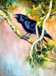 """Raven Calling"""