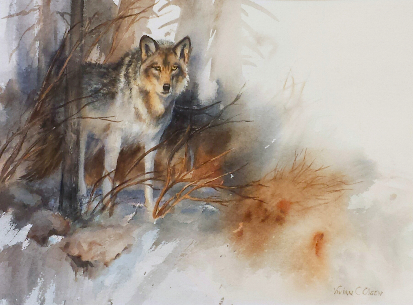 """Watching""  Timber Wolf  w/c  14x18"""