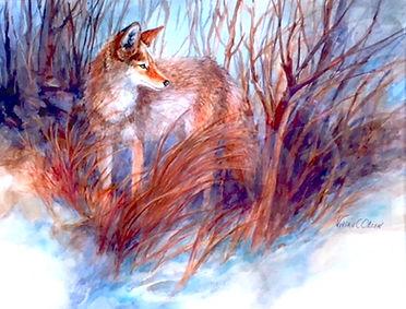 """Coyote on Alert"""