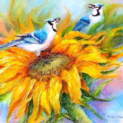 Jays and Sunflower