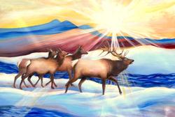 The Wanderers -  Elk