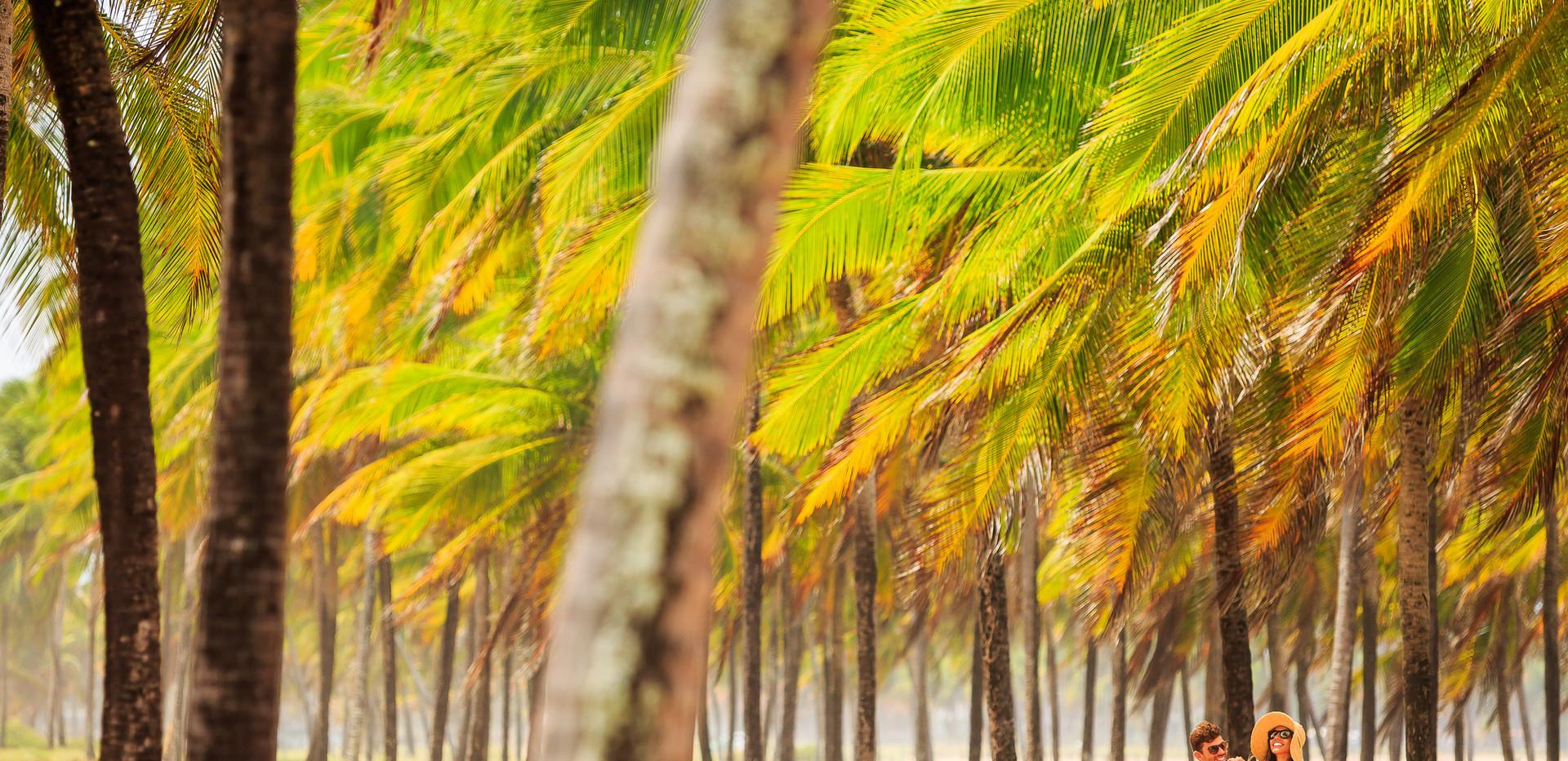 Praia de Maracaipe 3.jpg
