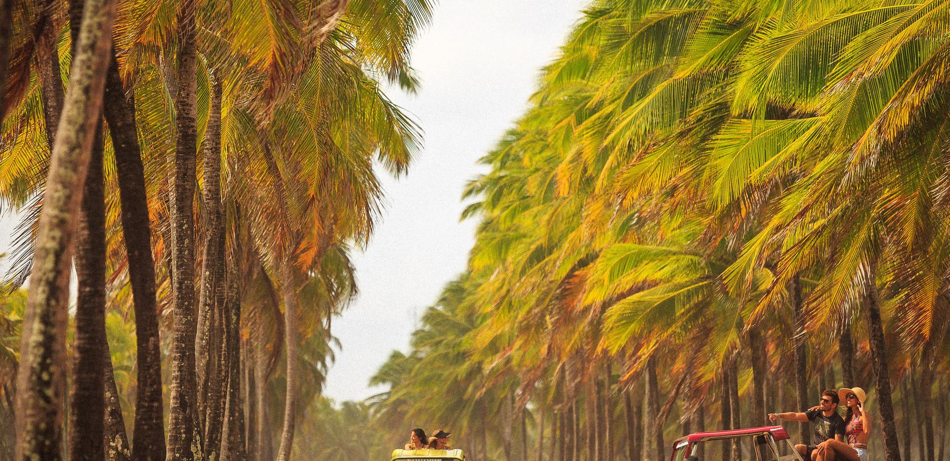 Praia de Maracaípe 1.jpg