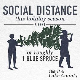 Social distance Christmas tree.jpg