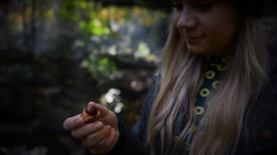 conkers image 4