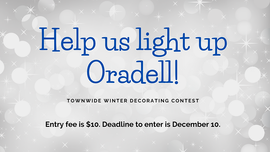 Light Up Oradell 2020 WEB BANNER.png