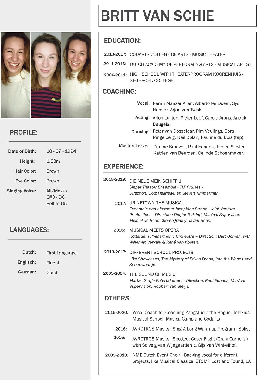 Resume Britt van Schie website.jpg