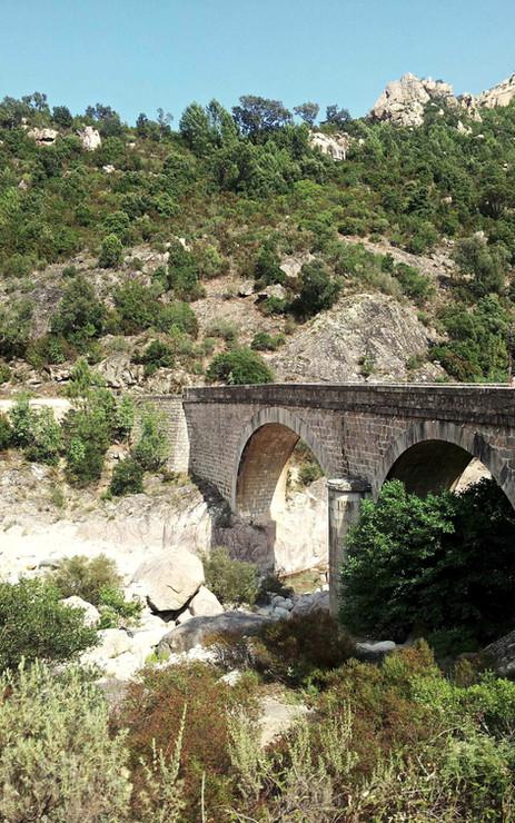Pont Génois d'Asco