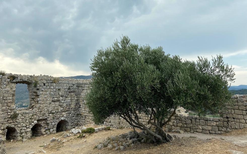 L'interieur du château d'Aguilar