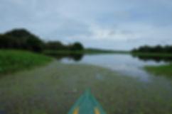 Activités à faire en Amazonie colombienne, Leticia.