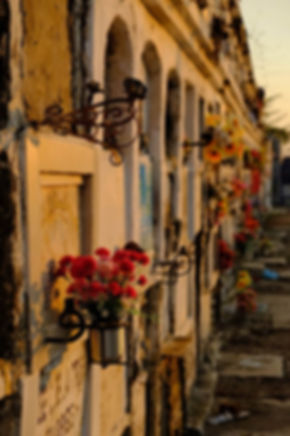 Visiter le cimetière de mompox, a ne pas manquer.