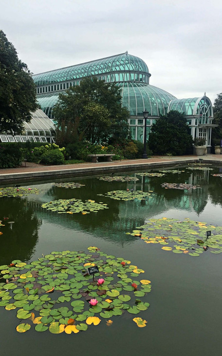 Serres du jardin botanique de New York