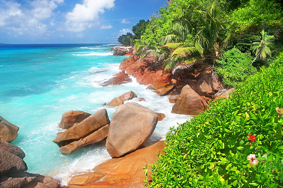 The Beauty Of The Seychelles, huge Bould