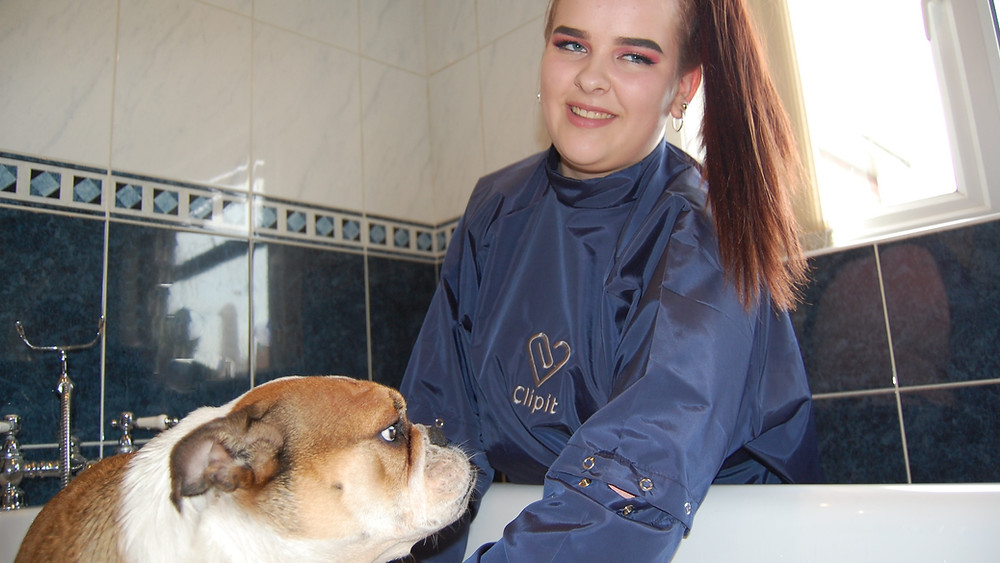 Protection against dog hair and water