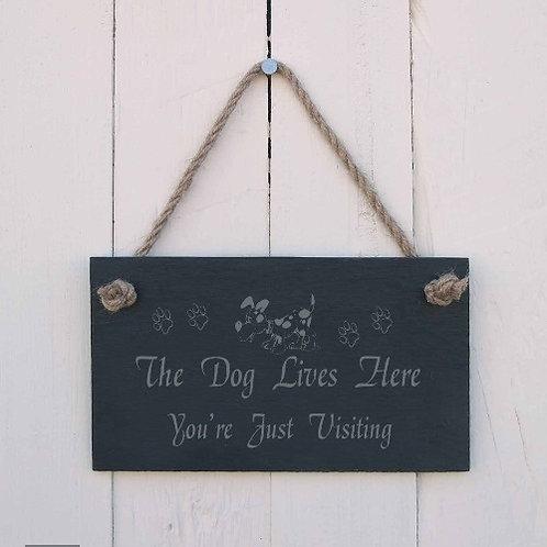 Slate Hanging Sign - The Dog Lives Here