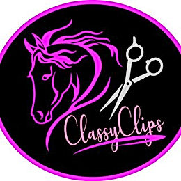 Classy Clips