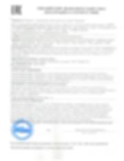 Декларация Спарк-1.png