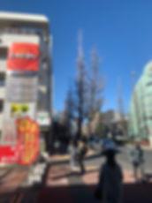S__34086943.jpg