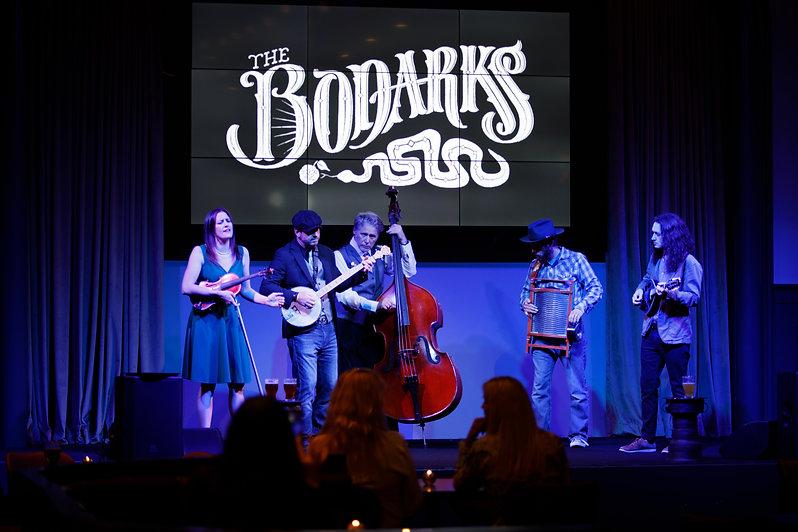 Bodarks from Audience Bodarks Background.jpg