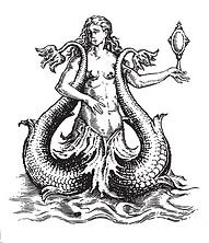 mermaid w mirror.png