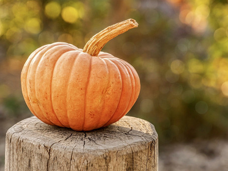 Lammas Recipe - Harvest Pumpkin Bread (Gluten-Free)