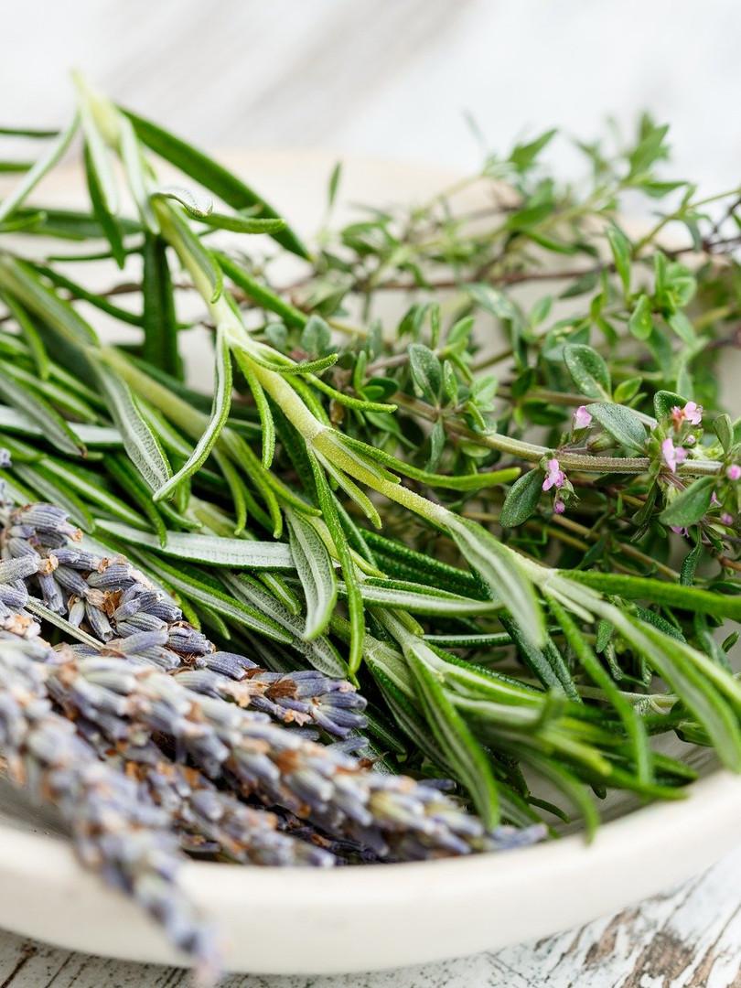 herbs-2523119_1920.jpg