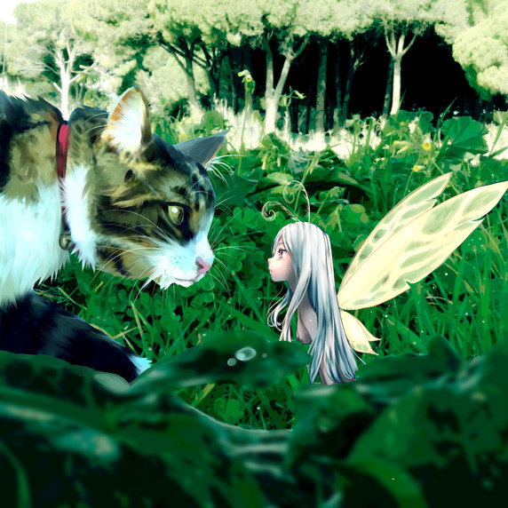 Firy and Cat