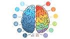 neuropsicologo varese