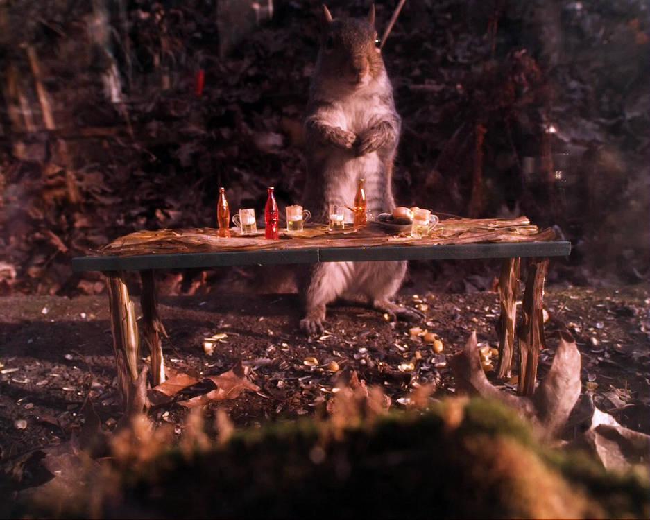 Squirrel_bartender.mp4
