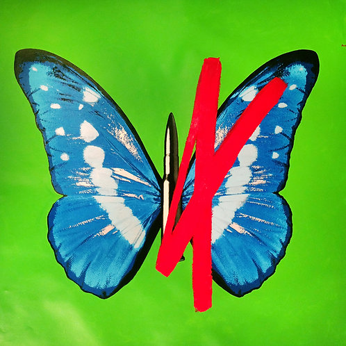 Butterfly On Green With Red Cross